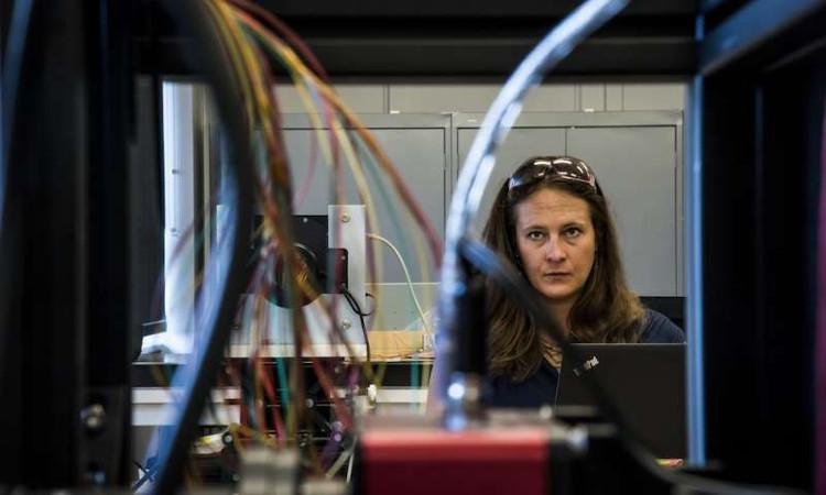5.000 robot sẽ thiết lập bản đồ 3D chi tiết nhất về vũ trụ