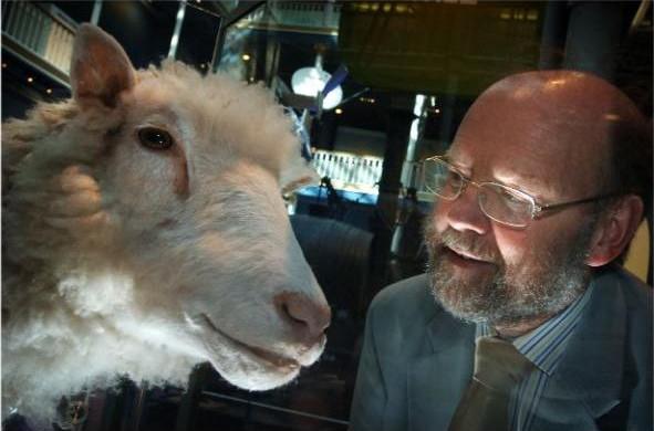 6 phát minh hậu cừu nhân bản Dolly