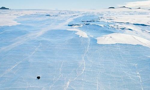 Anh chuẩn bị truy tìm xác hành tinh chết ở Nam Cực