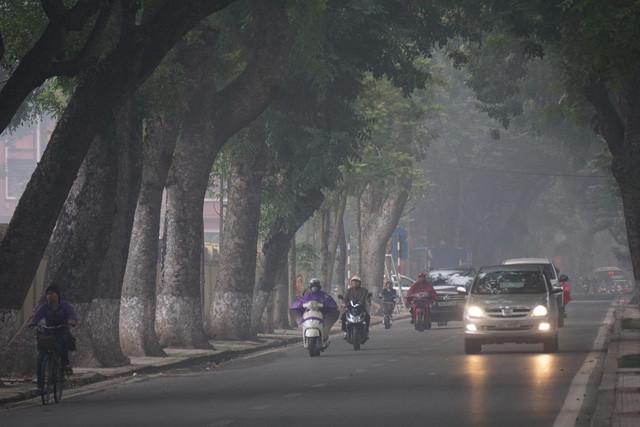 Bắc Bộ và Bắc Trung Bộ sáng có sương mù, trưa chiều trời nắng