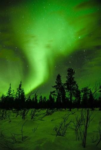 Bắc Cực đêm đông lạnh -15 độ C đẹp không thể tin nổi