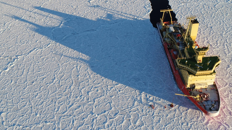 Băng vảy rồng - hiện tượng tự nhiên siêu hiếm xuất hiện tại Nam Cực sau 10 năm mất tích