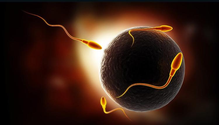 """""""Bao cao su phân tử"""" có thể trở thành hình thức kiểm soát sinh sản tốt nhất"""