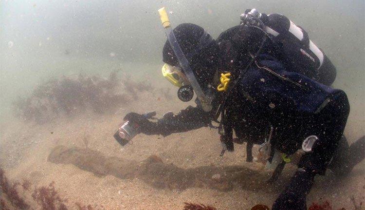 Bão để lộ xác tàu 300 tuổi giá trị nhất nước Anh