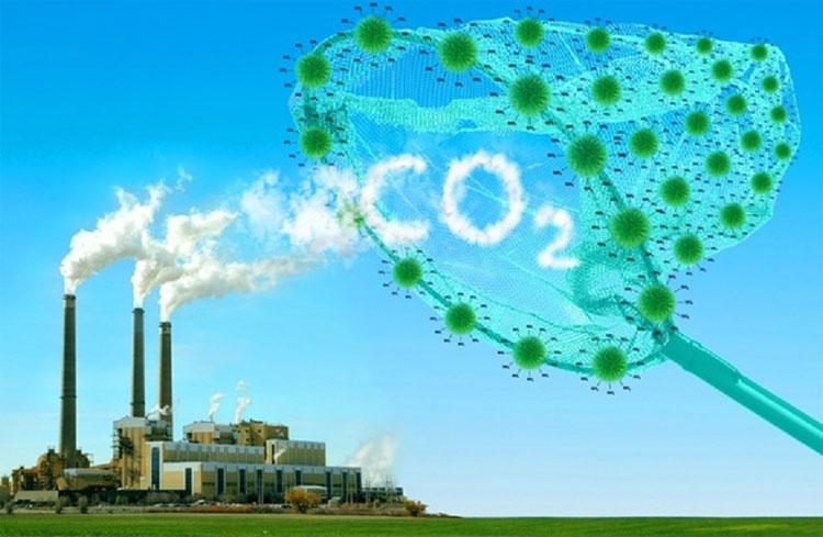 Biến khí thải CO2 thành phụ gia làm bánh baking soda