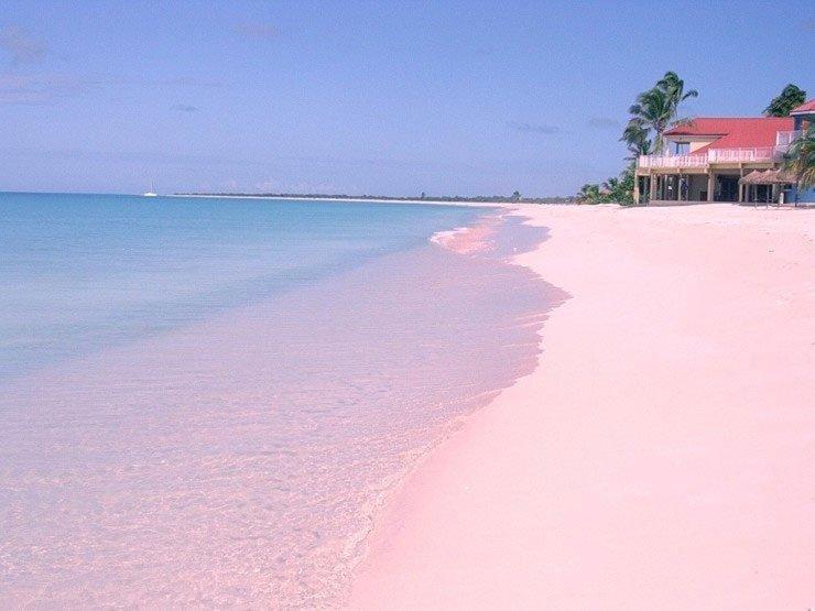 Bờ biển cát hồng tự nhiên ở Bahamas