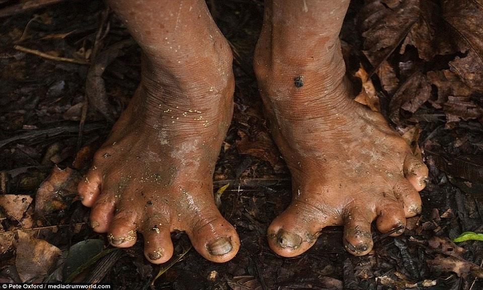 Bộ tộc sát khỉ chân 6 ngón, đu cây giỏi như Tarzan