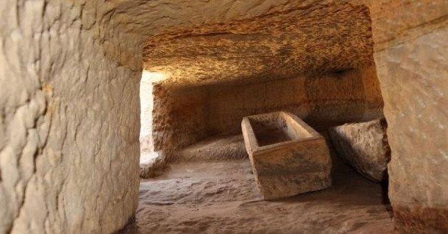 Cá sấu không đầu trong mộ cổ Ai Cập