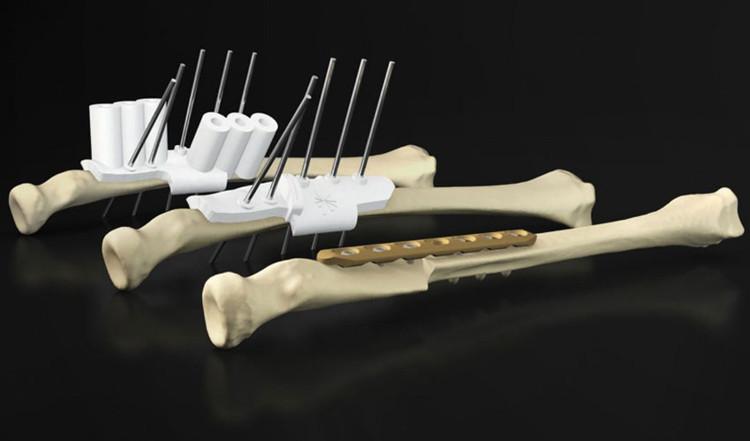 Các bộ phận cơ thể đang dần được sản xuất hàng loạt