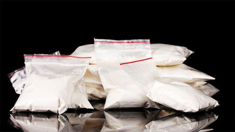 Các nhà khoa học Bỉ tìm thấy gene cocain