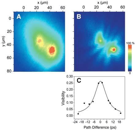 Các nhà vật lý khẳng định sự tồn tại của trạng thái ngưng tụ polariton