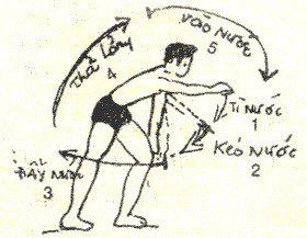 Cách bơi sải đúng kỹ thuật, đúng phương pháp