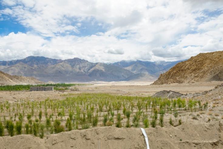 Cách con người xây tháp băng khổng lồ ngay giữa sa mạc
