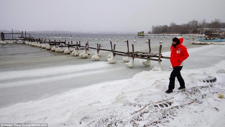 Châu Âu chìm trong băng tuyết giữa mùa đông chết người