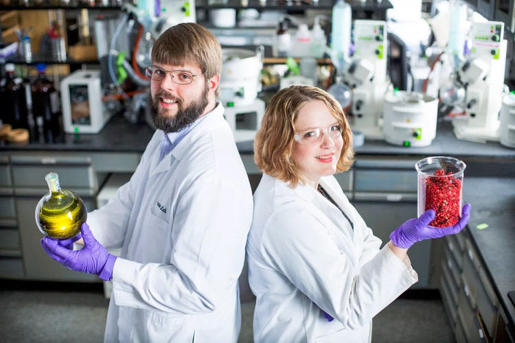 Chiết xuất từ loại quả này có thể chống lại siêu khuẩn chết người