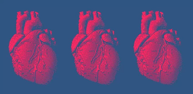 Chúng ta sẽ tái tạo được một trong những bộ phận khó thay thế nhất cơ thể