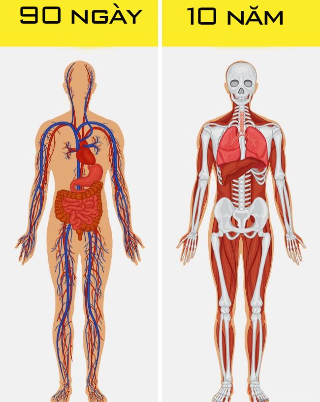Cơ thể người có thể làm được những điều này thì thật sự quá kinh ngạc