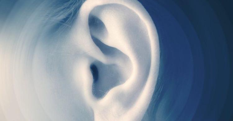 Con người có thể nhìn bằng âm thanh như loài dơi?