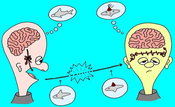 Đây chính là lý do khiến 99% phụ nữ sau sinh bị biến thành người mất não