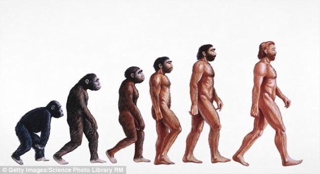 Đây là bằng chứng cho thấy sự tiến hóa của loài người vẫn còn rất lỗi
