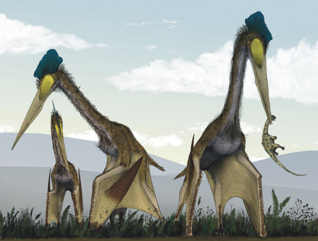 Đây là những sinh vật khổng lồ nhất xuất hiện trên Trái đất