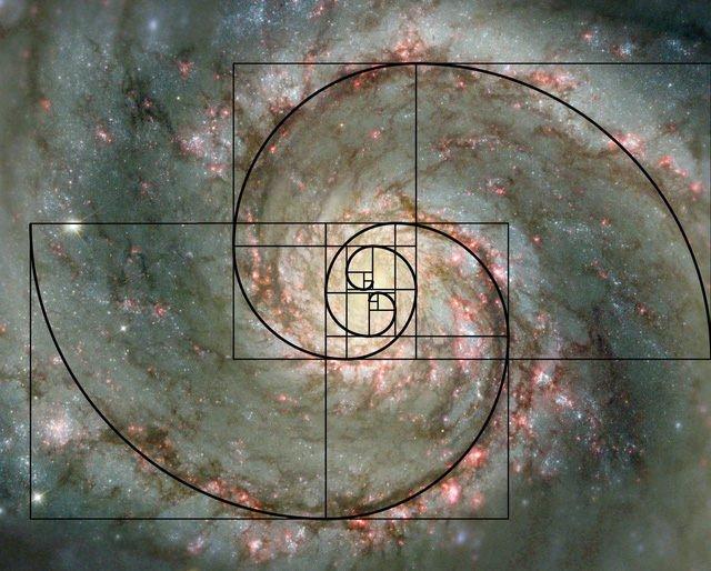 Dãy số Fibonacci và tỷ lệ vàng: bí ẩn của Vũ trụ hay chỉ đơn giản là sự trùng hợp?