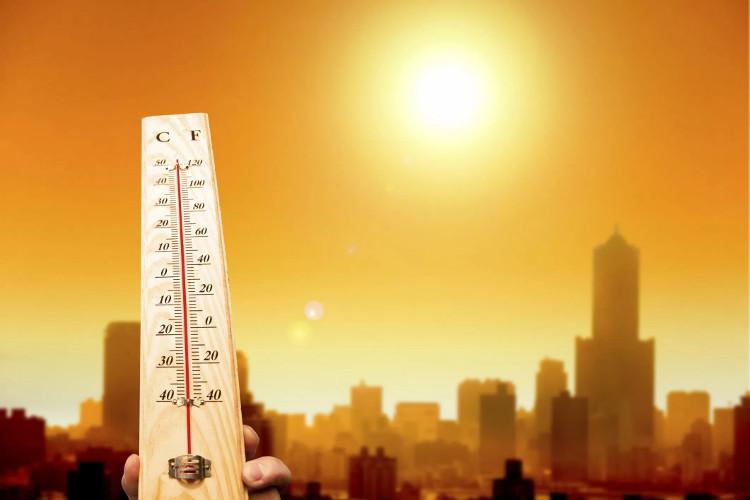Đến năm 2050, khoảng 350 triệu người chết mỗi năm do biến đổi khí hậu