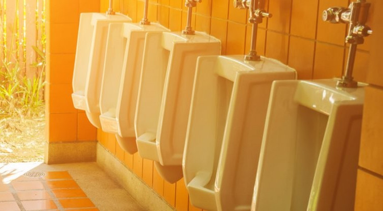 Dùng nước tiểu tạo ra điện, nhân tiện làm sạch hết mầm bệnh trong nước tiểu