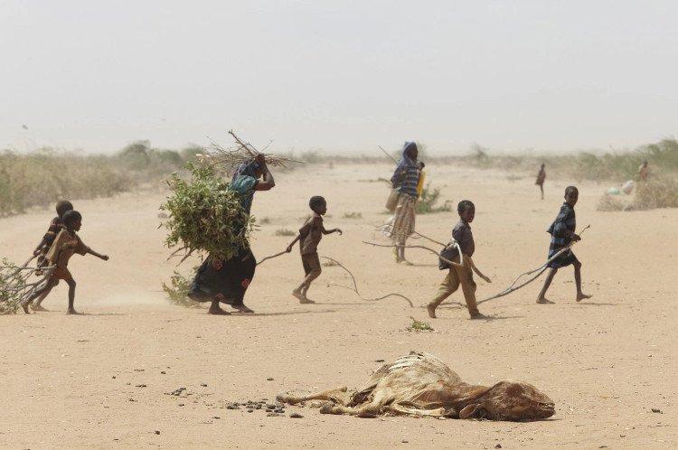 Hạn hán ở Somalia: 110 người chết trong 48 giờ