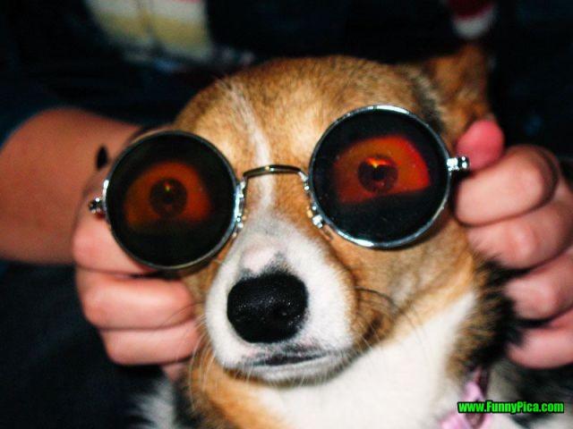 Hãy mang kính râm kể cả trong những ngày mùa đông không lạnh, nếu không muốn phải trả giá