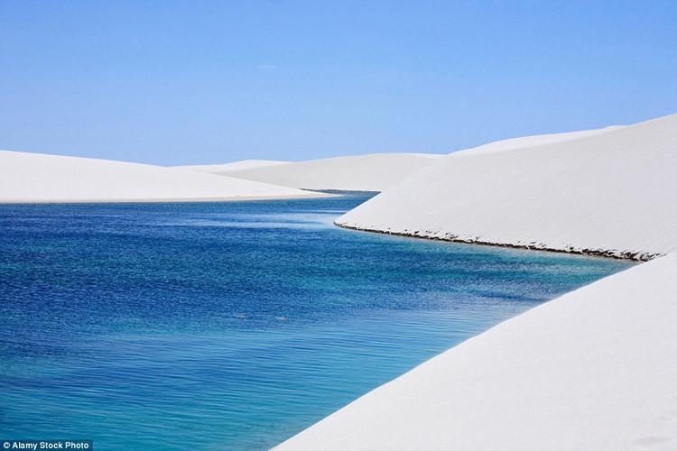 Hiện tượng sa mạc biến thành nghìn hồ bơi xanh biếc