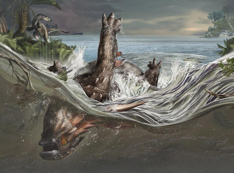 Hóa thạch rồng ngủ vẹn nguyên 112 triệu năm như thế nào?
