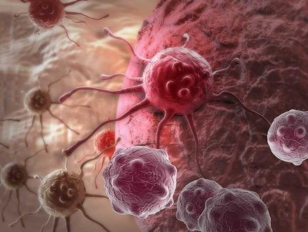 Kết hợp 2 phương pháp truyền thống, các nhà khoa học có thể đánh bại ung thư