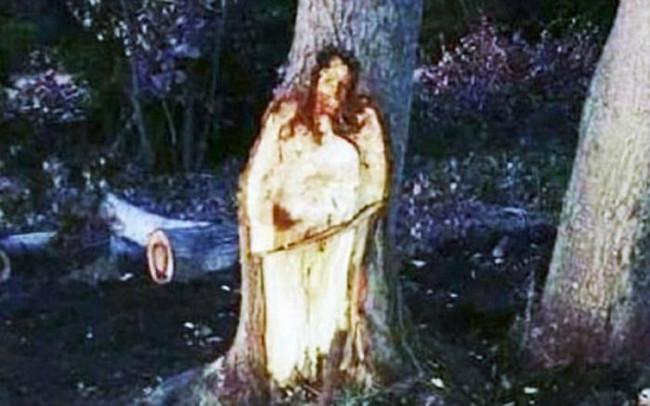 Khúc cây hình Chúa Jesus được dân Argentina tôn thờ