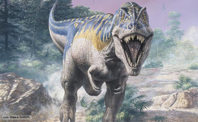 Khủng long bạo chúa T-rex cũng biết yêu - nghiên cứu gây shock của các nhà khoa học