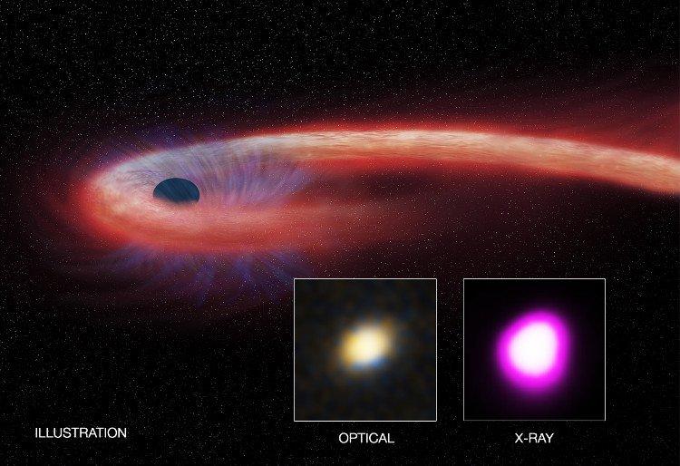 Lần đầu phát hiện siêu hố đen nuốt gọn một ngôi sao