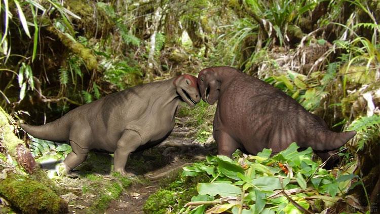 Loài khủng long có xương sọ dày như giáp tăng