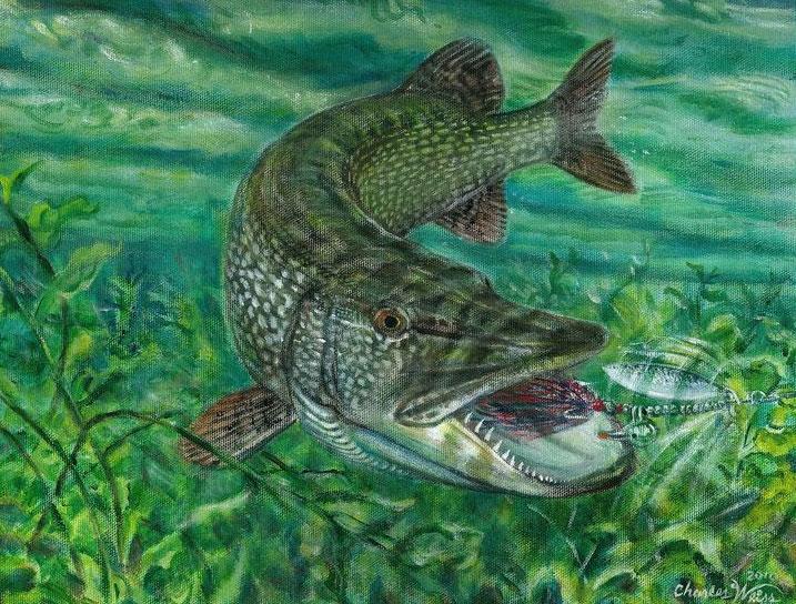 Loài thủy quái nước ngọt khiến dân bơi lội chạy mất dép