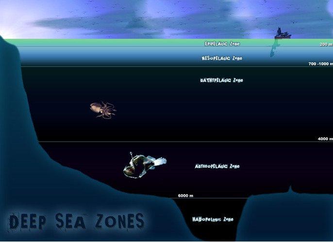 Loạt bí ẩn ma quái trong lòng đại dương đánh đố nhân loại hàng trăm năm