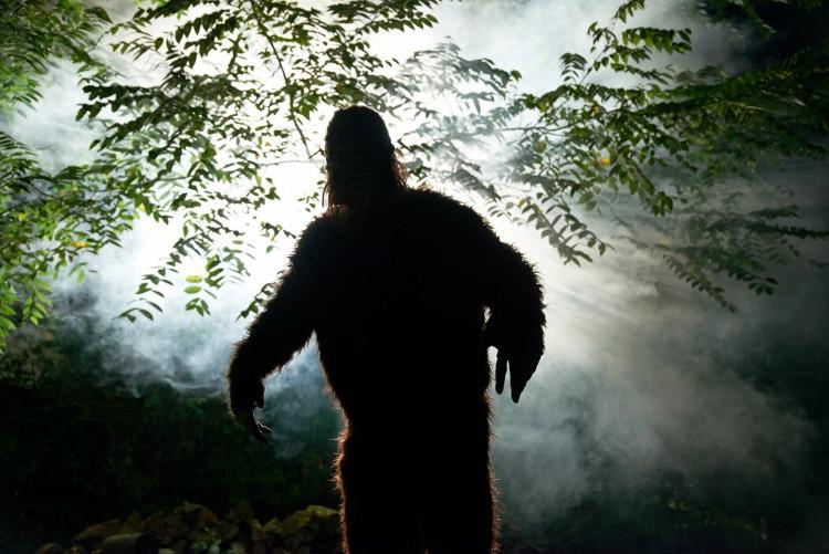Loạt dấu chân khổng lồ trên tuyết, nghi là của quái vật Bigfoot