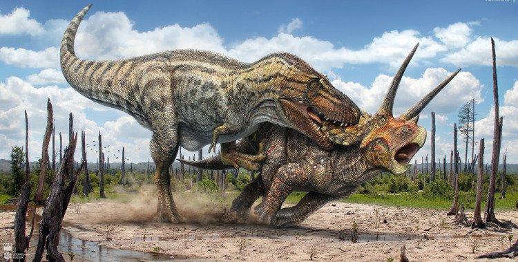 Lực cắn của khủng long bạo chúa nghiền nát ba xe hơi cùng lúc