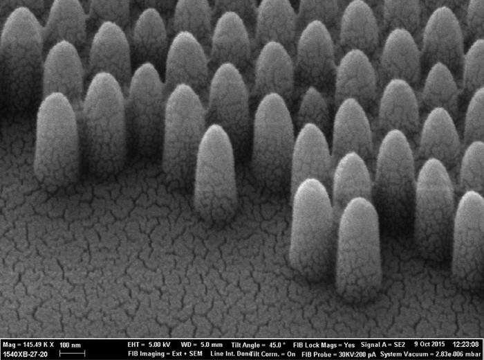 Mắt bướm đêm gợi ý cho các nhà nghiên cứu phát triển cửa kính tự làm sạch, chống chói