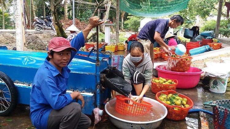 Một nông dân chế tạo thành công máy rửa quả hồng xiêm