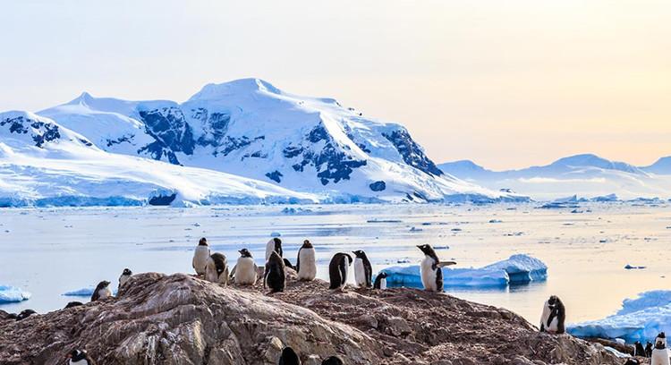 Nam Cực - địa ngục lửa giữa trần gian ở nơi lạnh lẽo nhất thế giới