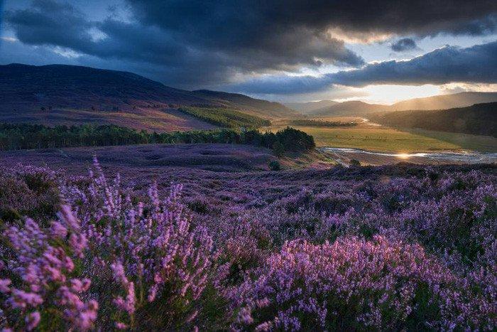 Ngắm thiên nhiên đẹp yên bình nhân Ngày Trái đất