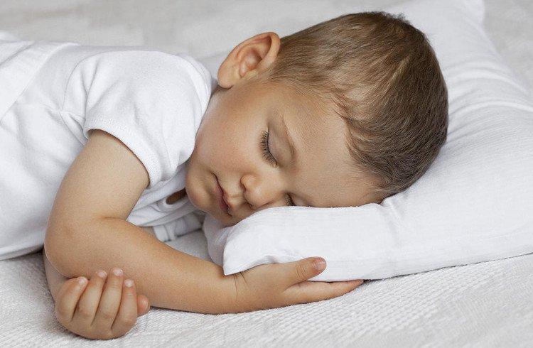 Nghiên cứu mới khẳng định: chúng ta có thể học trong khi ngủ