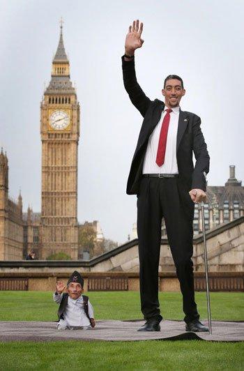 Người cao nhất và người thấp nhất thế giới gặp nhau