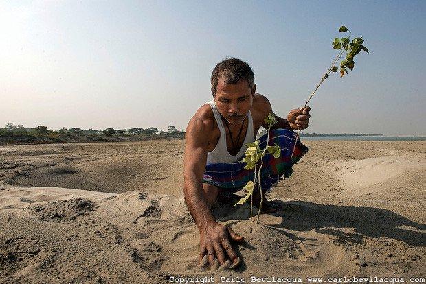 Người đàn ông trồng cây suốt 40 năm và kết quả bất ngờ đến không tưởng