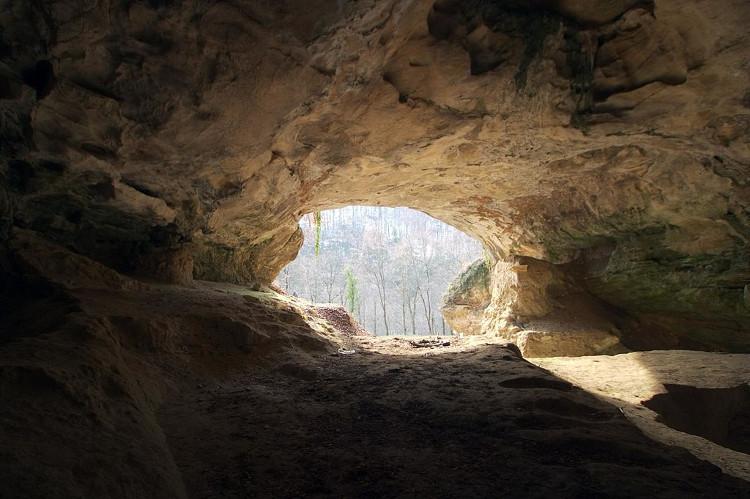 Người Neanderthal và người Sapiens không gặp nhau ở hang Vindia, Croatia