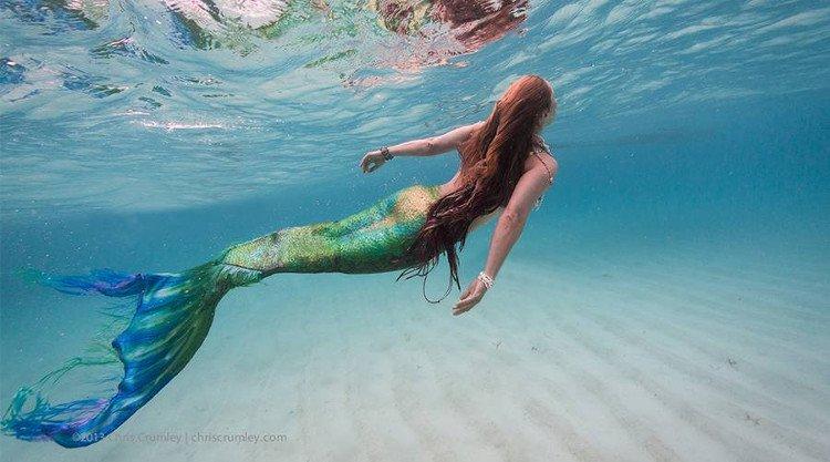 Nguồn gốc nàng tiên cá dưới góc nhìn khoa học